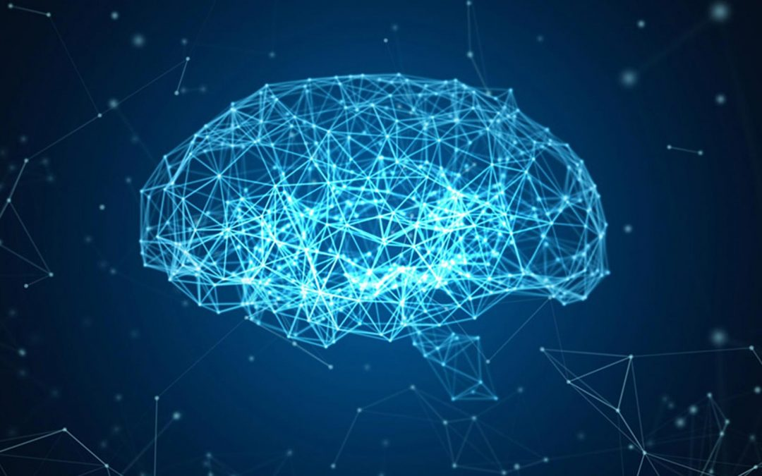 Brain Plasticity in Autism- new approaches from Yale University